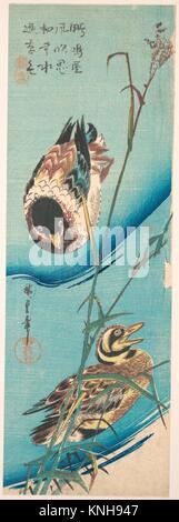 歌川広重画 雪中芦に鴨/Mallard Ducks and Snow-covered Reeds. Artist: Utagawa Hiroshige (Japanese, Tokyo - Stock Photo