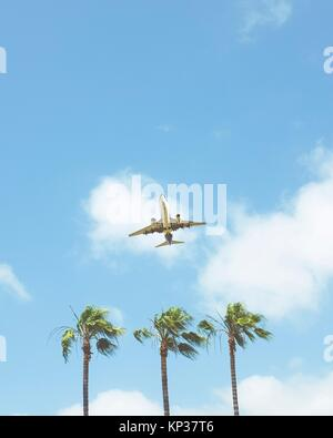 Airplane taking off from San Diego International Airport with three palm trees below and a blue sky with clouds - Stock Photo
