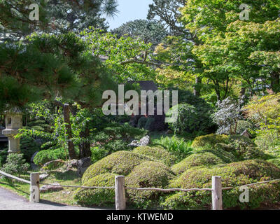 A pagoda at the Japanese Tea Garden in Golden Gate Park, San Stock ...
