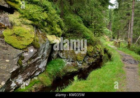 Erzgebirge, Black water valley, historical green ditch, Schwarzwassertal, historischer Grüner Graben - Stock Photo