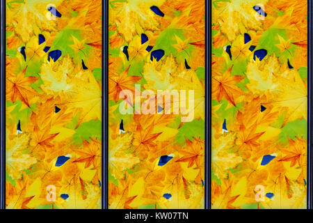 Image of a stained-glass window with autumn motifs in yellow tones for use as a background. - Stock Photo