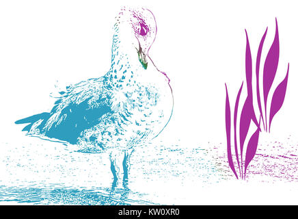 Abstract ink drawing of bird preening her feathers - Stock Photo