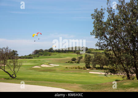 People paragliding parasailing over long reef aquatic reserve and long reef golf club,Sydney,Australia - Stock Photo