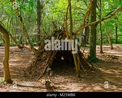 In a clearing in Sherwood Forest is a child's den, made of branches, twigs and covered in fallen leaves. - Stock Photo