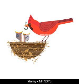 Nothern red cardinal feeding baby birds icon. Cute comic cartoon. Newborn hungry bird sitting in straw nest. Minimalism - Stock Photo