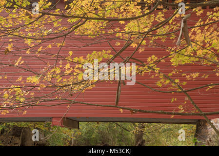 Autumn golden leaf colors against the red Roddy Road Covered Bridge near Thurmont MD. - Stock Photo