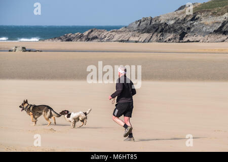 A man running with his dogs on Crantock Beach in Newquay Cornwall. - Stock Photo