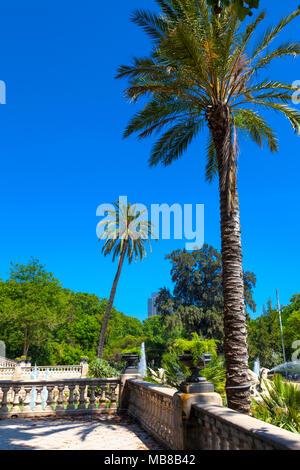 Tall palm trees at the Cascada Monumental fountain in Parc de la Ciutadella, Barcelona, Spain - Stock Photo