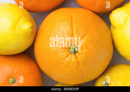 Bunch of Ripe Juicy Whole Citrus Fruits Oranges Tangerines Lemons on White Stone Marble Table. Vitamins Healthy Diet Summer Detox Vegan Concept. Food  - Stock Photo