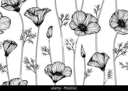 Seamless California Poppy Flower Pattern Background Black And White With Drawing Line Art Illustration