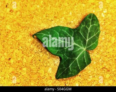 ivy leaf cork background - Stock Photo