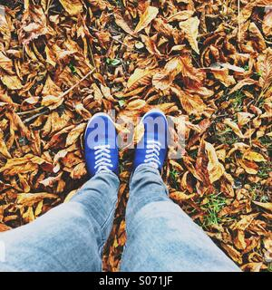 Walking feet on fallen autumn leaves - Stock Photo