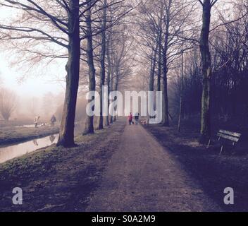 Misty walk in the park - Stock Photo