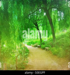 Verdant green Parc de Bercy with weeping willow trees and fresh Spring foliage in Paris, France. Vintage texture - Stock Photo