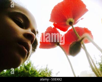 Little girl with poppies. - Stock Photo