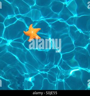 Toy starfish in a swimming pool. - Stock Photo