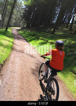 Mountain biker in the forest round Derwent in the Peak District Derbyshire - Stock Photo