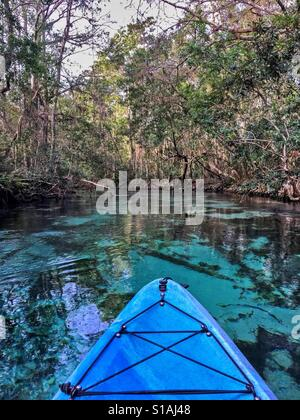 Kayaking on the Weeki Wachee Springs - Stock Photo