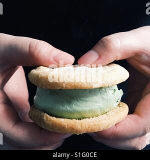 Hand holding ice cream sandwich - Stock Photo
