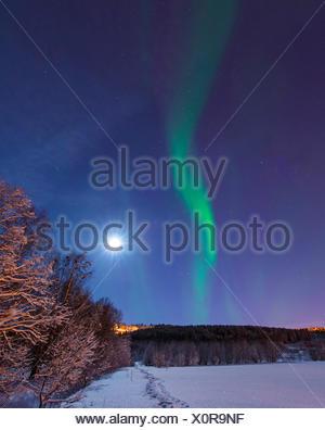 aurora and moon above winter scenery, Norway, Troms, Tromsoe - Stock Photo