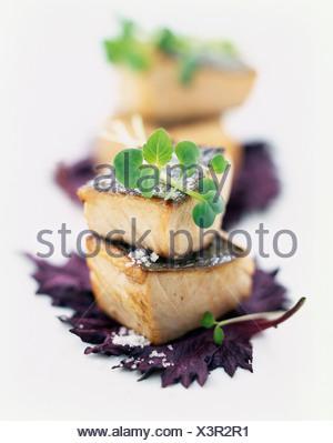 Pan-fried red tuna,marinated shizo shoots and sechuan pepper - Stock Photo