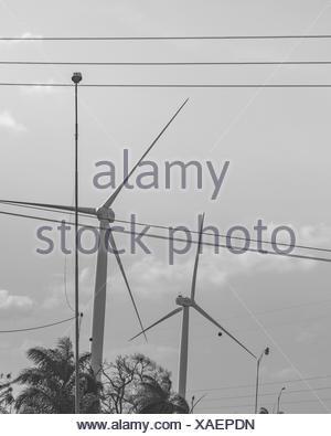 Eolic Windmills Paraiba Brazil - Stock Photo