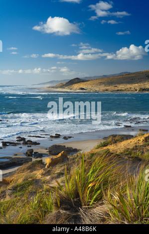 der Eingang zum Hokianga Harbour von Arai Te Uru Landzungen an der wilden Westküste von North Island Neuseeland - Stockfoto