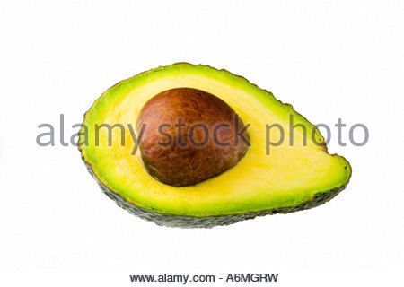 Avocado (Persea Americana) - Stockfoto