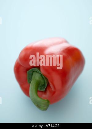 Rote Paprika auf blassen blauen Hintergrund - high-End Hasselblad 61mb digitales Bild - Stockfoto