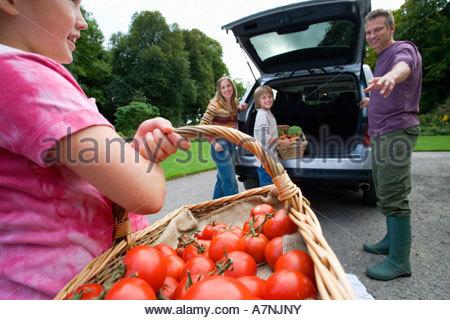 Zwei Generationen Familie laden Auto mit frischem Gemüse Mädchen 8 10 Tragetasche Korb voller Tomaten lächelnd Seitenansicht - Stockfoto