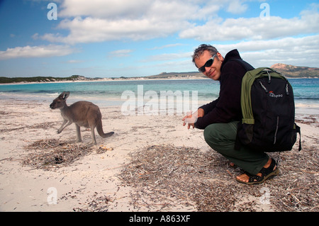 Touristen mit Känguru auf dem Strand, Lucky Bay, Cape Le Grand Nationalpark, Esperance, Western Australia - Stockfoto