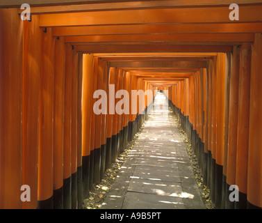 PFAD TORII TOREN FUSHIMI INARI-TAISHA SCHREIN KYOTO HONSHU JAPAN - Stockfoto