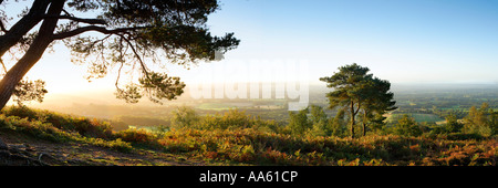 "Panoramablick vom ""Leith Hill' an der Dämmerung, North Downs, Surrey in England - Stockfoto"