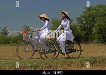 Zwei junge Frauen in konische Hüte und traditionellen weißen Ao Dai Kostüm Fahrt Fahrräder auf Pfad Reisfeldern - Stockfoto