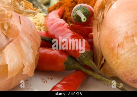 Eine Auswahl an Gewürzen vor einem weißen Hintergrund - Stockfoto