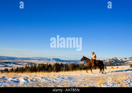 Reifer Mann auf einem Pferd in einem Schnee bedeckt Feld - Stockfoto