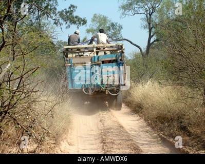 Gefährliche LKW mit Rindern Loding auf einer einsamen Sandstrand Straße an der verlassenen Grenze zwischen Paraguay - Stockfoto