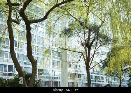 Bäume und Bürogebäude - Stockfoto