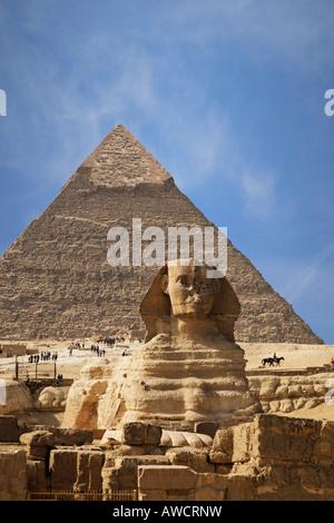 Große Sphinx von Gizeh in der Nähe von Kairo, Ägypten, Nordafrika, Afrika - Stockfoto