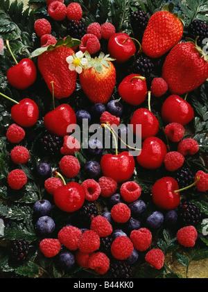 Komposition mit Sommer Obst - Stockfoto