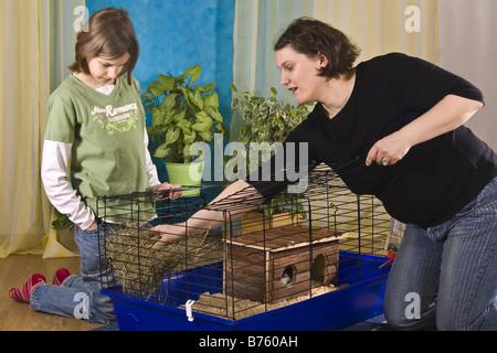 Mutter und Tochter bereitet einen Käfig für Meerschweinchen oder Kaninchen - Stockfoto