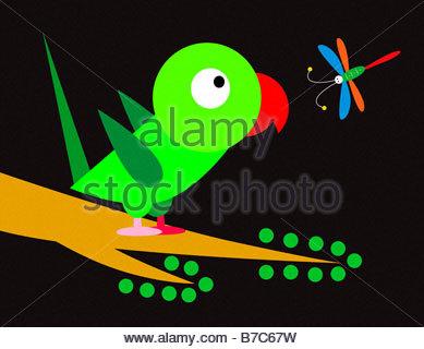 Papagei und Libelle - Stockfoto