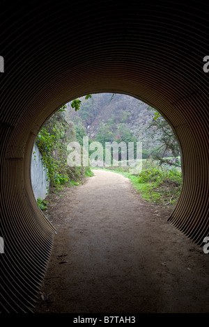 Fußgängertunnel, Julia Pfeiffer Burns State Park; Big Sur Coast, Kalifornien, USA - Stockfoto