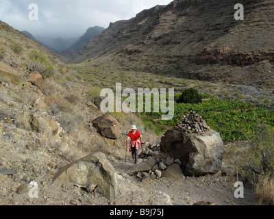 Frau, Wandern durch den Barranco de Chinguarime in der Nähe von Playa Santiago, Bananenplantage, La Gomera, Kanarische - Stockfoto
