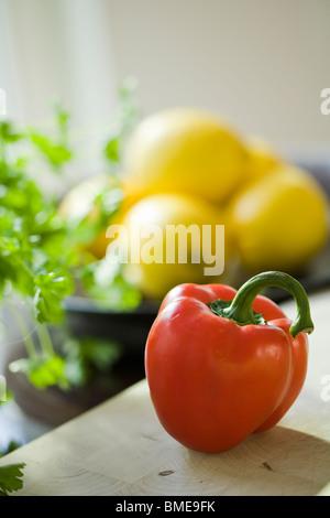 Eine rote Paprika, Schweden. - Stockfoto
