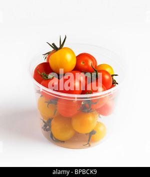Wanne mit frisch gepflückten Tomaten nach Hause - Stockfoto