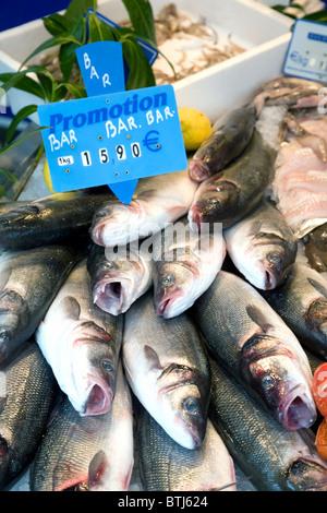 Fischmarkt für den Verkauf auf einem Fisch-Stall in der französischen Stadt Coulommiers in der Nähe von Paris, Ile - Stockfoto