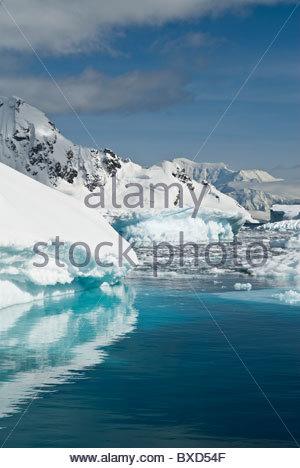 Packeis und Eisberge, Antarktis. - Stockfoto