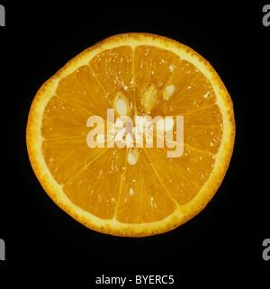 Schnittbereich der Zitrusfrucht orange Sorte Succari - Stockfoto
