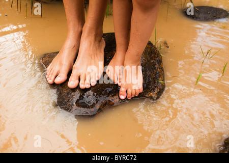 barfuß auf einem Felsen im trüben Wasser in Currumbin Creek; Currumbin, gold Coast, Queensland, Australien - Stockfoto